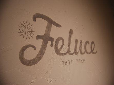 hair make~Feluce3