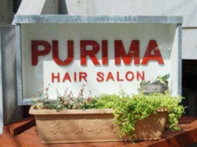 PURIMA2