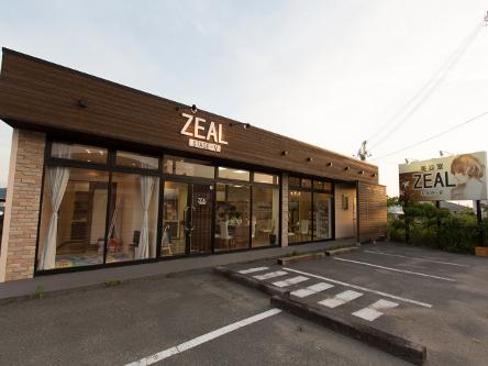 ZEAL STAGE V5