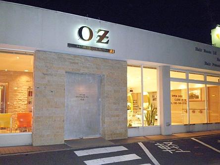 OZ hair design5