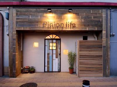 Pinion life2