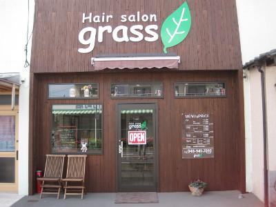 Hair salon grass3