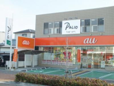 hair art PALIO3