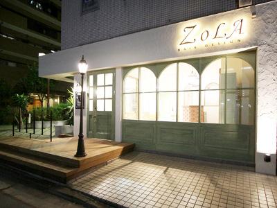 ZOLA hair3