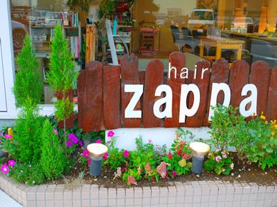 Hair zappa2
