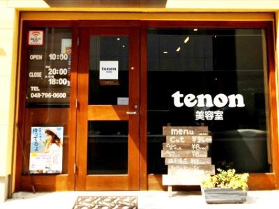 Tenon3
