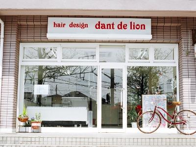 hair design dant de lion3