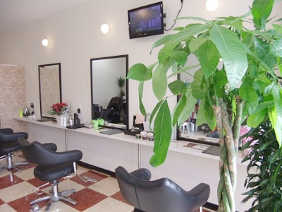 Hair Salon RinGs2