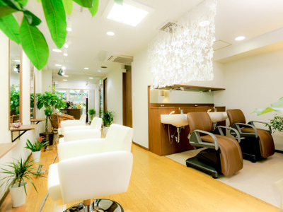 Hair Salon Noa1