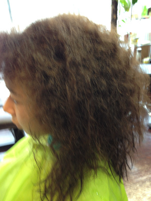 Healing Hair anne 5