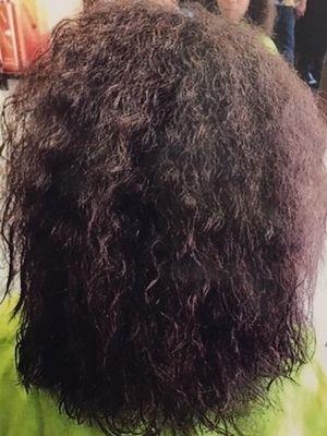 Healing Hair anne8