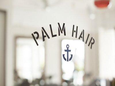 PALM HAIR3