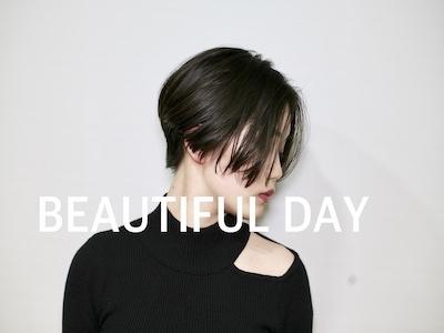 BEAUTIFUL DAY2