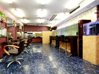 HairSalon Ara