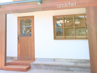 umichel3
