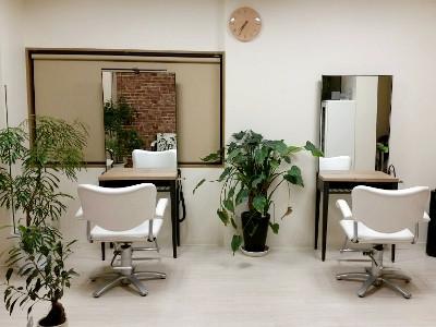 ailenir Hair Design1