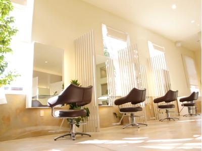 Hair Studio Clamps1