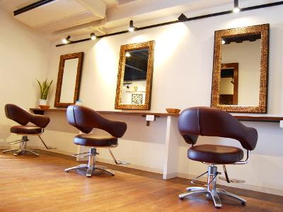 Hermitage hair design