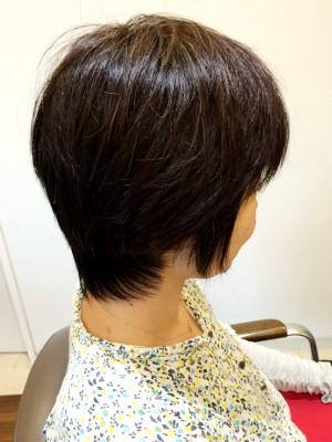hairs' shanti3