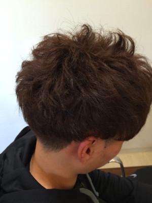 hairs' shanti16