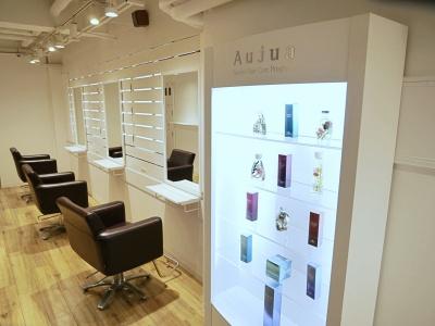 Hair salon Aluss3