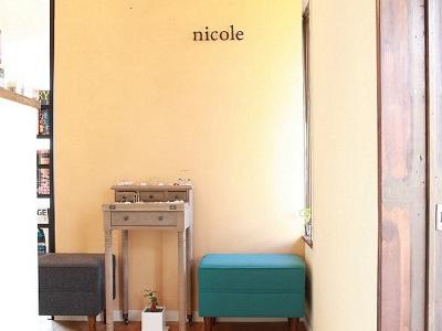 nicole hair design3