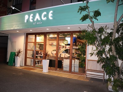 PEACE of hair4