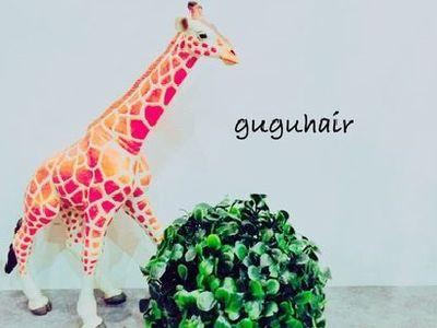 gugu hair 2