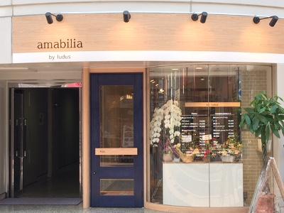 amabilia by ludus3