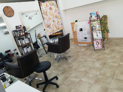 Private salon Gerbera1