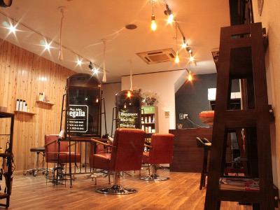 Hair Salon Regalia1