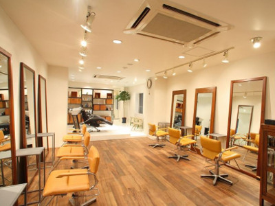 Hair Salon INg1