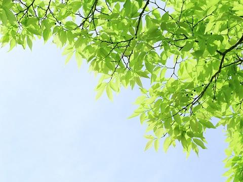 紫外線、本当は注意しなければならない季節っていつ?